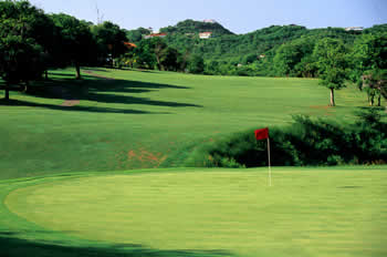 The Rolling Fairways of The St. Lucia Golf & CC